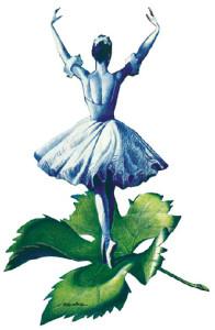 vignale_danza